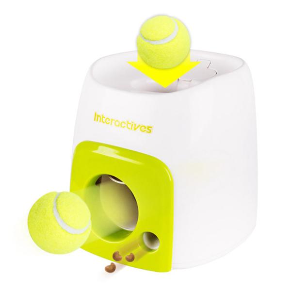 Chó tự động tương tác chó con xử lý đồ chơi bóng tennis đào tạo thực phẩm