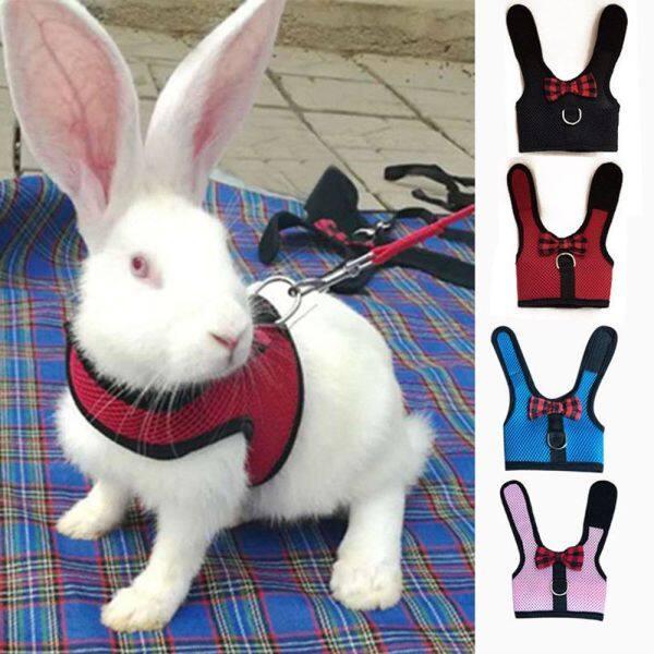 Hamster Mềm Thỏ Bunny Đai Có Lưới Dây Xích Động Vật Nhỏ Áo Cho Thú Cưng Phù Hợp Với Ngoài Trời