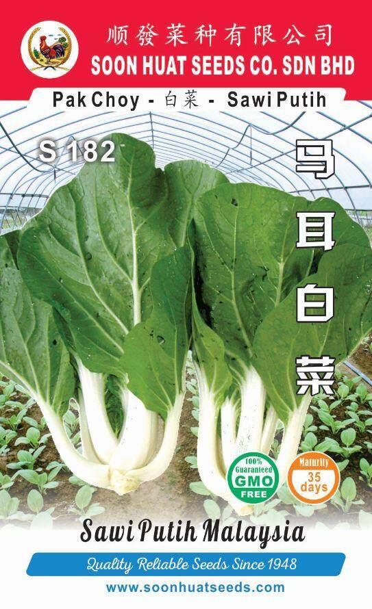Benih Sawi Putih S182 Pak Choy seeds x1000 Soon Huat Seeds