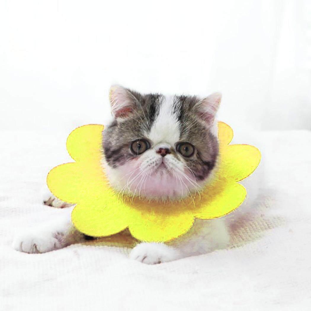 Thú Cưng Phục Hồi Cổ Dễ Thương Hình Hoa Cát Phục Hồi Cổ Nơ Đeo Cổ cho Mèo Con - 5