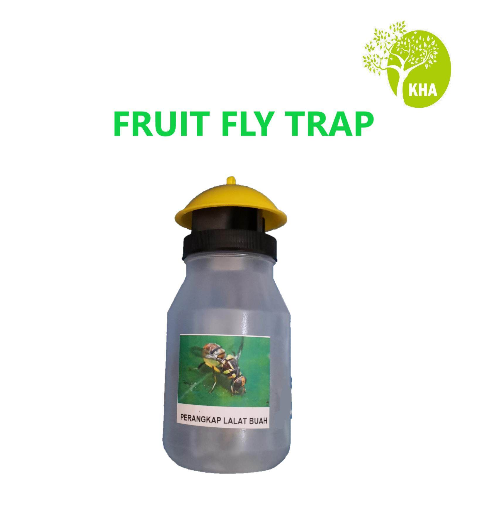 Fruit Fly Trap + 1 free lure (Organic Pest Control- Kill Fruit Fly, Protect Your Crops and Farms)