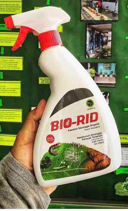 Racun Serangga Organik (Organic Insect Repellent Spray)