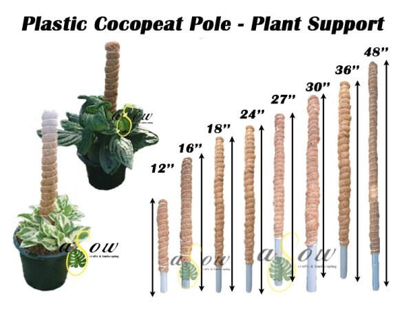 [COCOPEAT POLE] Plastic Cocopeat Pole Plant Support 爬藤植物支撑柱