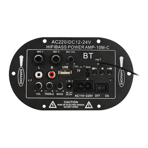 WDPlanet, Bảng Mạch Khuếch Đại Bluetooth 12V 24V 220V, Đầu Phát USB FM TF Monophone