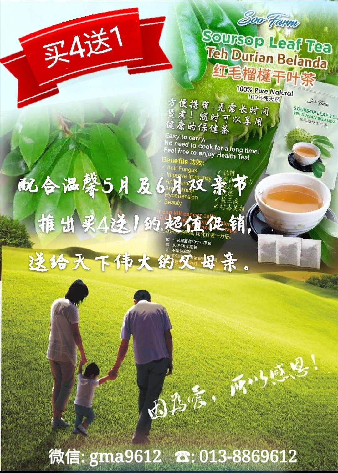 Soursop Leaf Tea For Cancer And Other Illness By Sarawak Products.