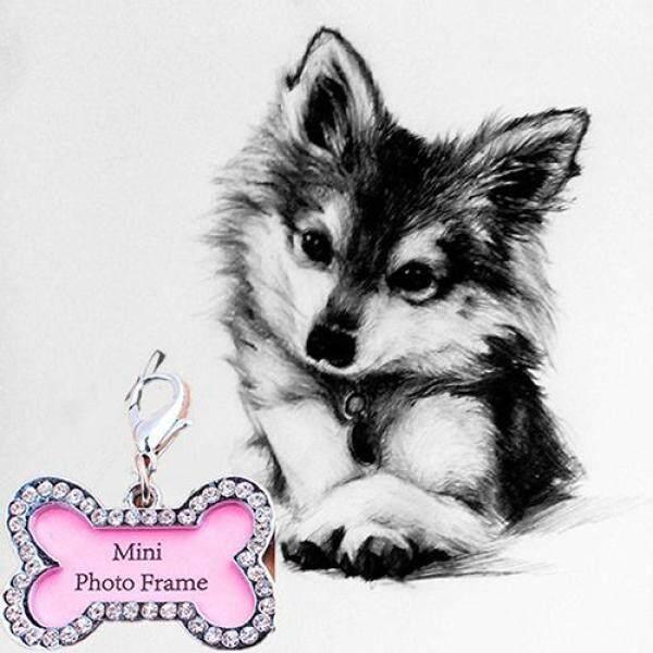 Sguai®Mặt Dây Chuyền Địa Chỉ Thẻ Tên Thú Cưng Hình Xương Con Chó Con Chó Con Cổ Áo, Thẻ Chống Mất