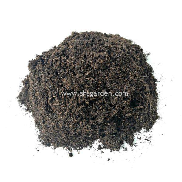 Imported Peat Moss (1.8kg) for Soil Substrate Planting Medium Seed Germination & Microgreen SHS Kebun