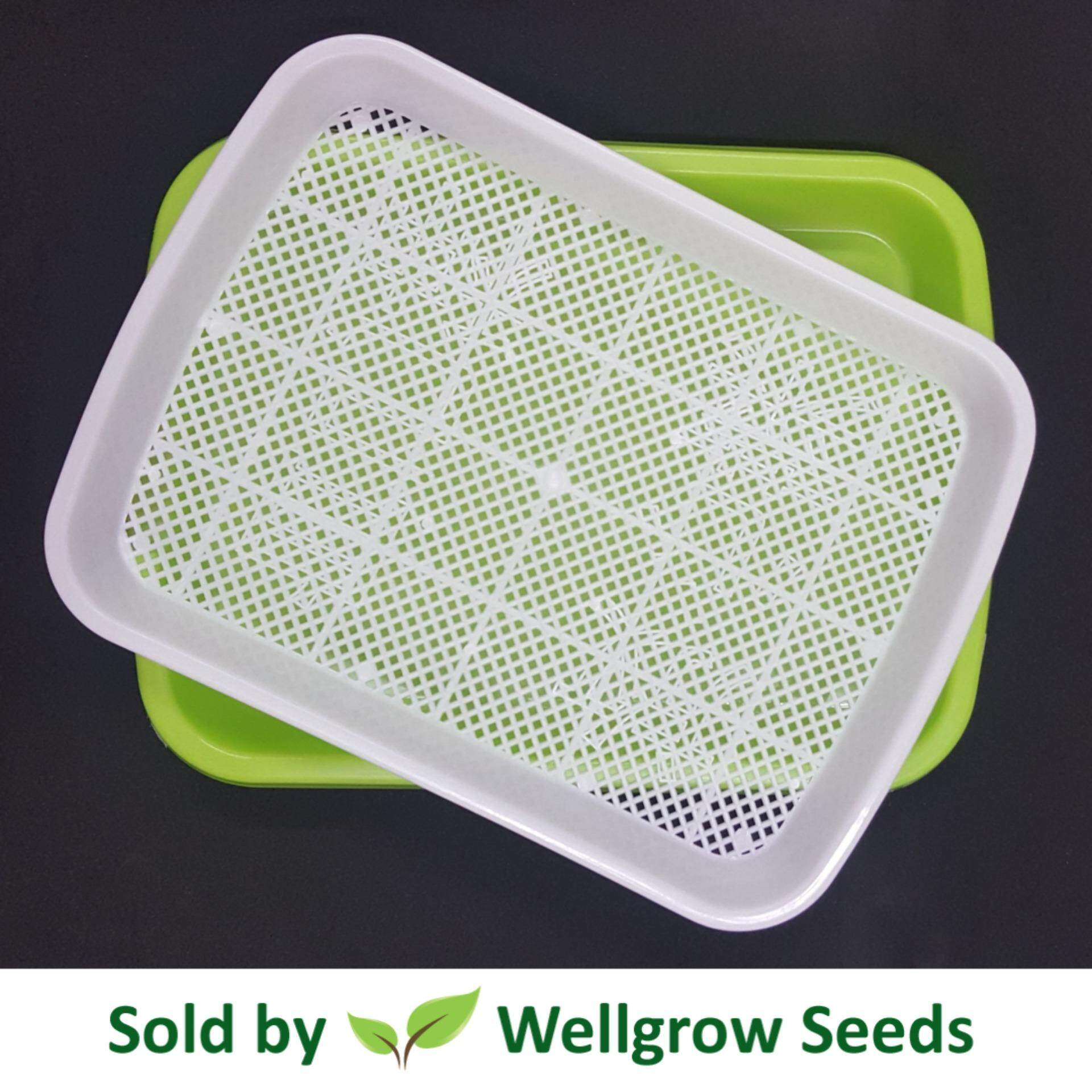 Microgreens / Sprouting Tray 菜苗发芽盘 1 set