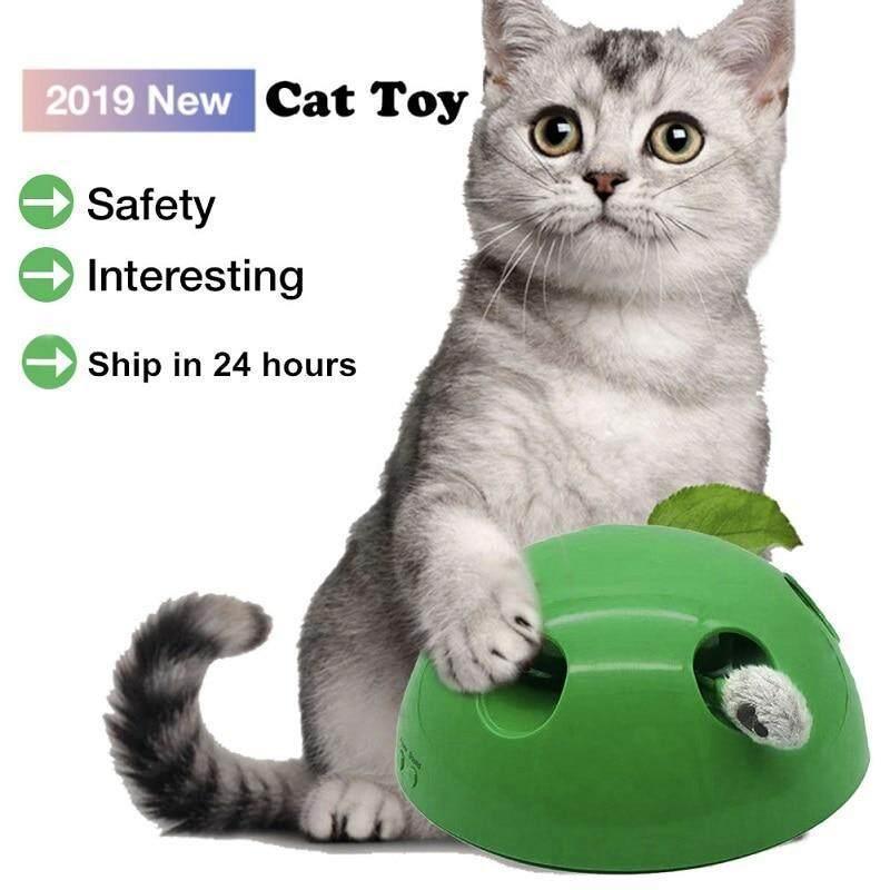 POP N Chơi Đồ Chơi Cho Mèo Đồ Chơi Tương Tác Cho Mèo Vui Nhộn Tại Thiết Bị Cào Cho Mèo Làm Sắc Nét Móng Vuốt Pop Chơi Huấn Luyện Mèo Đồ Chơi Hình Thú Cưng