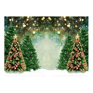 Phông Nền Chụp Ảnh, Cây Giáng Sinh Vòng Hoa Cửa Sổ Buồng Chụp Ảnh Nhà Gỗ Nền Tuyết Mùa Đông thumbnail