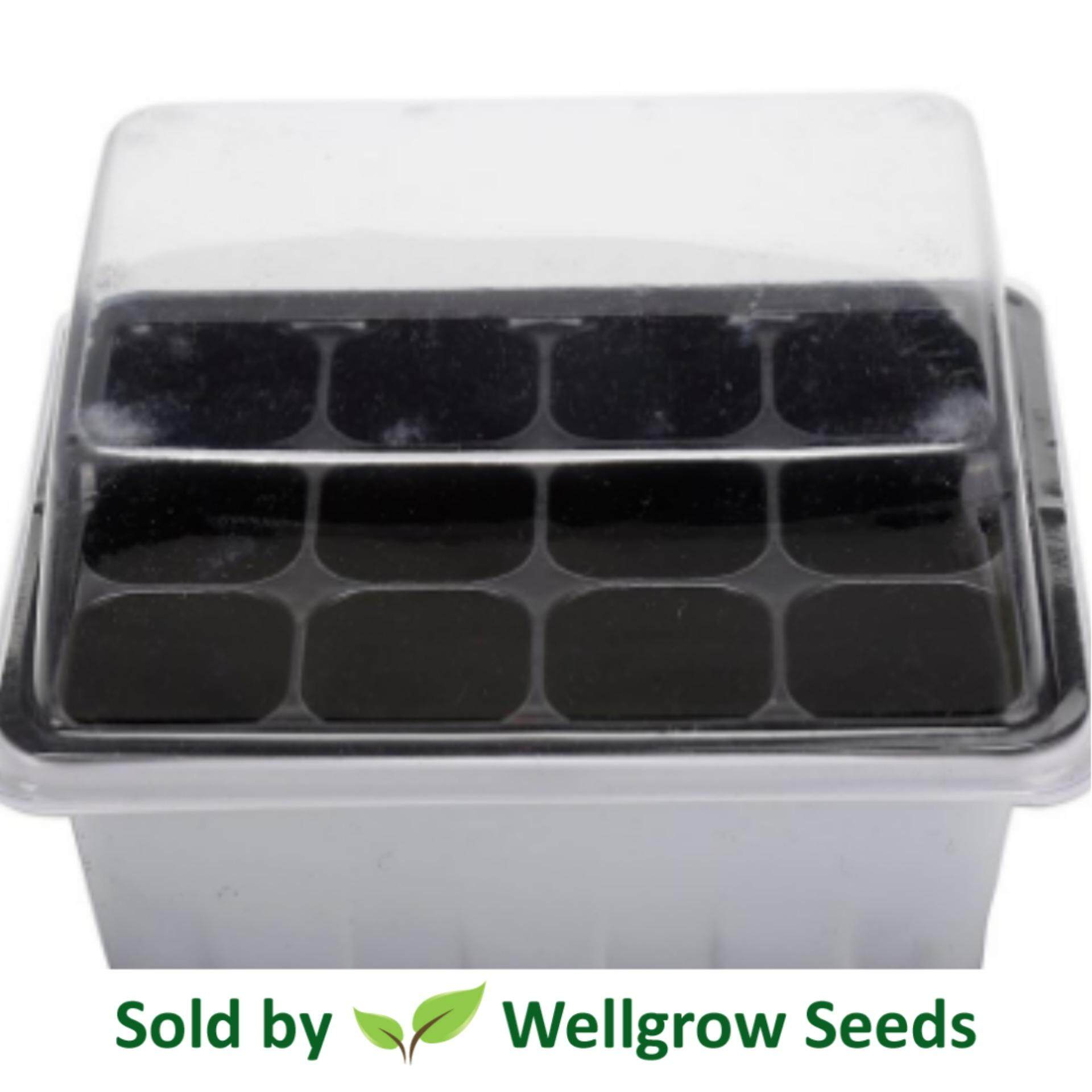 Seedling Tray 12 Holes With Cover