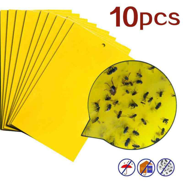 10pcs Strong Flies Sticky Traps Bugs Sticky Catching Aphid Insects Pest Killer Outdoor Fly Board Bait Flies Double Traps Yellow