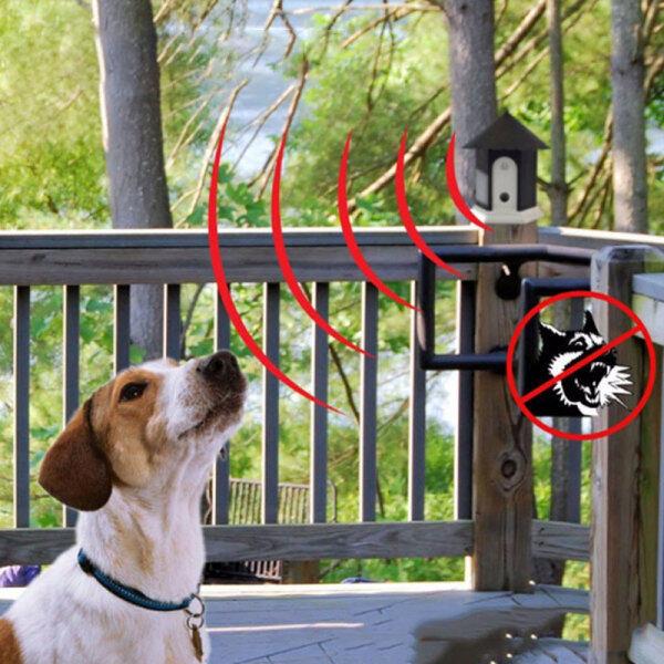 Pet Dog siêu âm chống sủa Bộ giảm thanh chó vỏ ngoài trời huấn luyện viên ngăn chặn sủa thiết bị đào tạo ngừng cung cấp cho chó bền và không thấm nước ngăn chó sủa