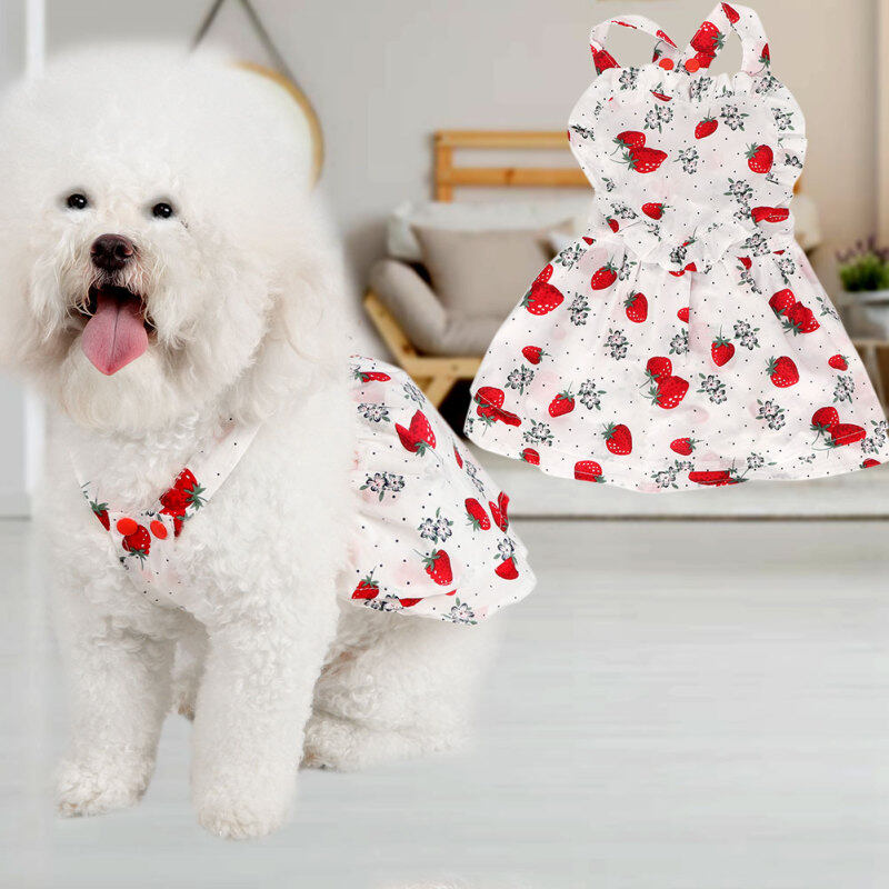 Thú Cưng Mùa Hè Vải Nhỏ Cho Chó Mèo Váy In Hình Chó Con Tutu Công Chúa Váy Cotton Trang Phục L