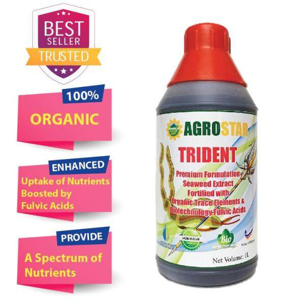AGROSTAR - TRIDENT - Premium Formulation Seaweed Extract fortified with Organic Trace Elements & Biotechnology Fulvic Acids for vegetables, flowers, durian, fruit trees 1L
