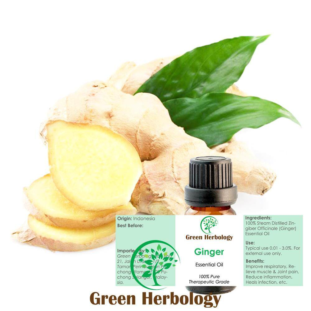 Pure Ginger Essential Oil 5ML