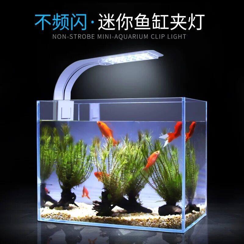 perfk Acrylic Transparent Aquarium Tropical Sea Aquatic Rumble Fish Small LED Tank