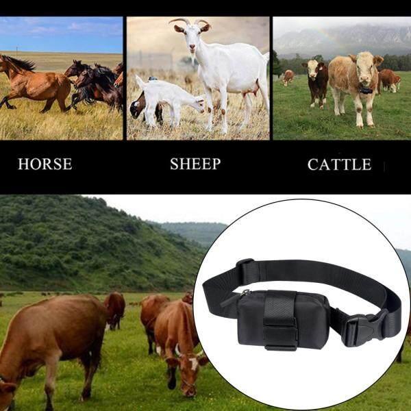 Động Vật Chăn Thả Gia Súc Cừu Phổ Vải Không Thấm Nước Kiểu Oxford Chống Lạc Có Thể Điều Chỉnh Bộ Theo Dõi GPS Cổ Áo