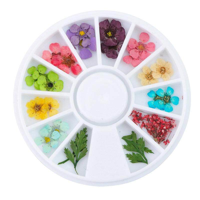 Mixed Natural Nail Dried Flower Diy 3D Pressed Blossom Flower Leaf Slider Sticker Polish Manicure Nail Art Decorations