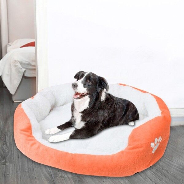 Đệm lót giữ ấm cho thú cưng khi ở trong nhà DIO - INTL