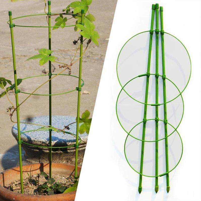 Climbing Plant Support Cage Garden Trellis Flowers Tomato Stand 3 Rings Welcome