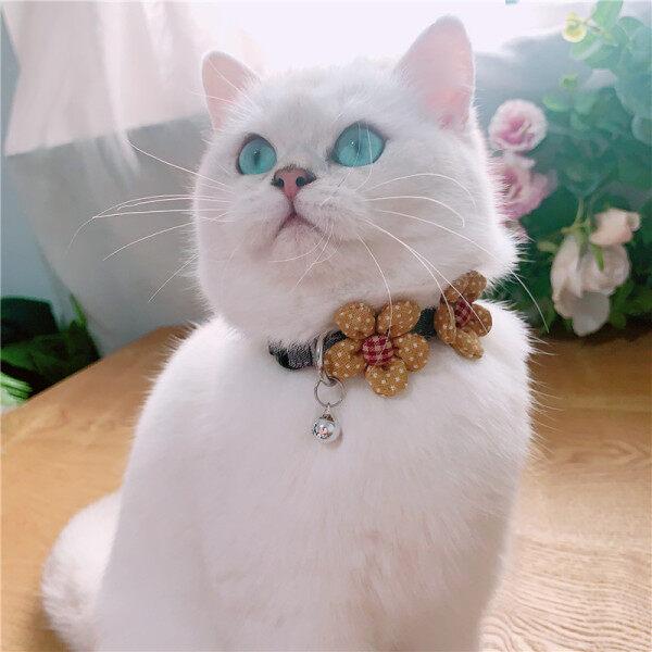 Cat Dog Thiết Kế Ban Đầu Của Dog Collar