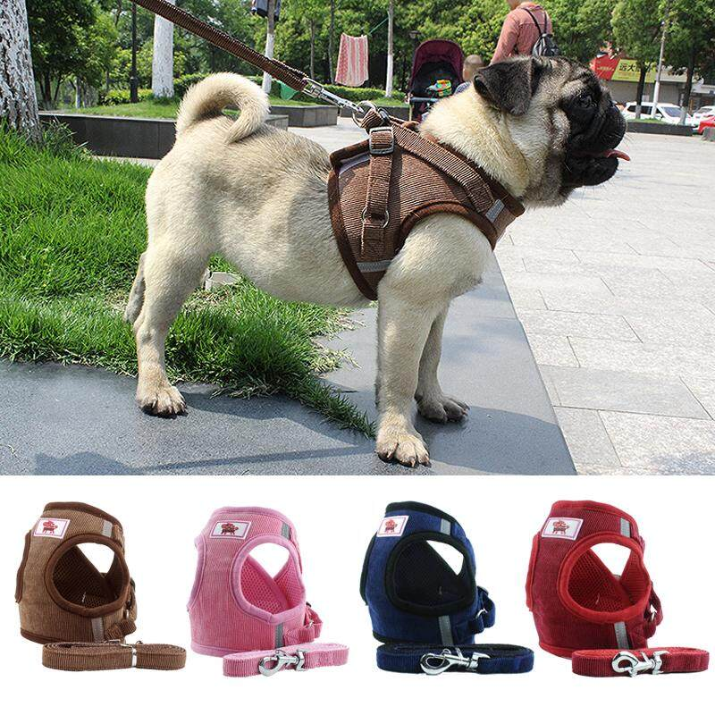 bc072a2c73dd Pet Dog Cat Harness with Leash Adjustable Vest Walking Supplies Soft  Breathable Collar Puppy for Small