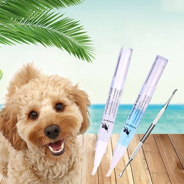 Bộ Dụng Cụ Sửa Chữa Làm Sạch Răng Thú Cưng Bút Vệ Sinh Đá Nha Khoa Cao Răng Chó Mèo 5Ml Của Tôi giá rẻ