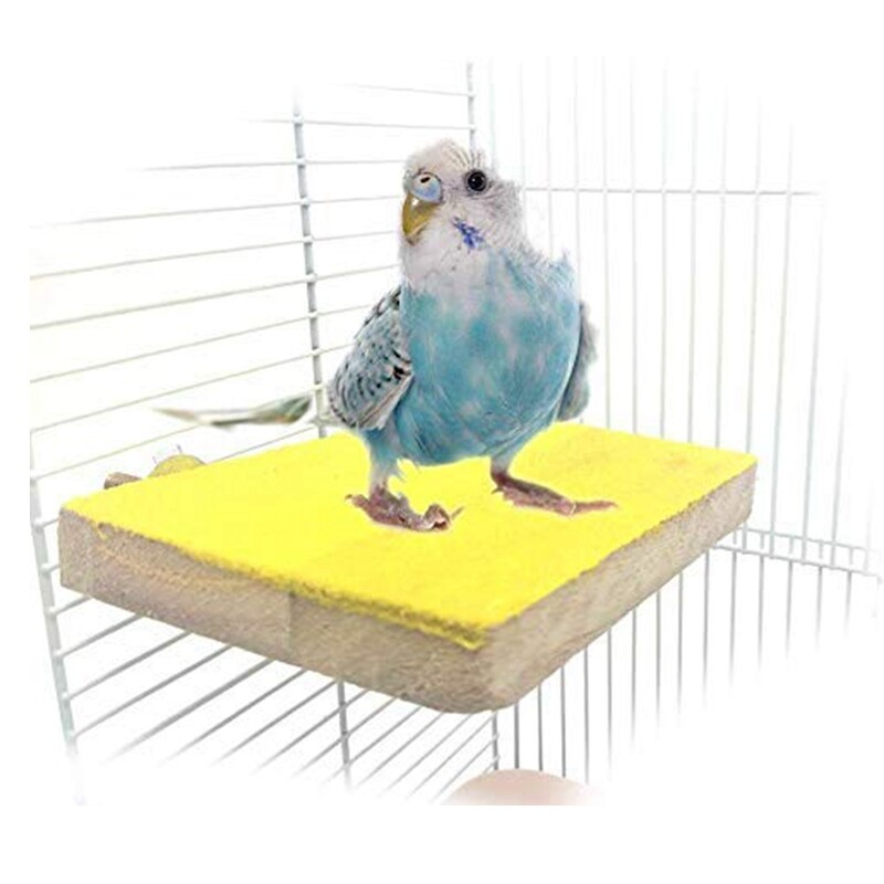 Bird Perch Stand Platform Natural Wood Playground Paws Grinding Clean for Pet Parrot Budgies Parakeet Cockatiels Conure Lovebirds Rat Mouse Cage Accessories Exercise Toys