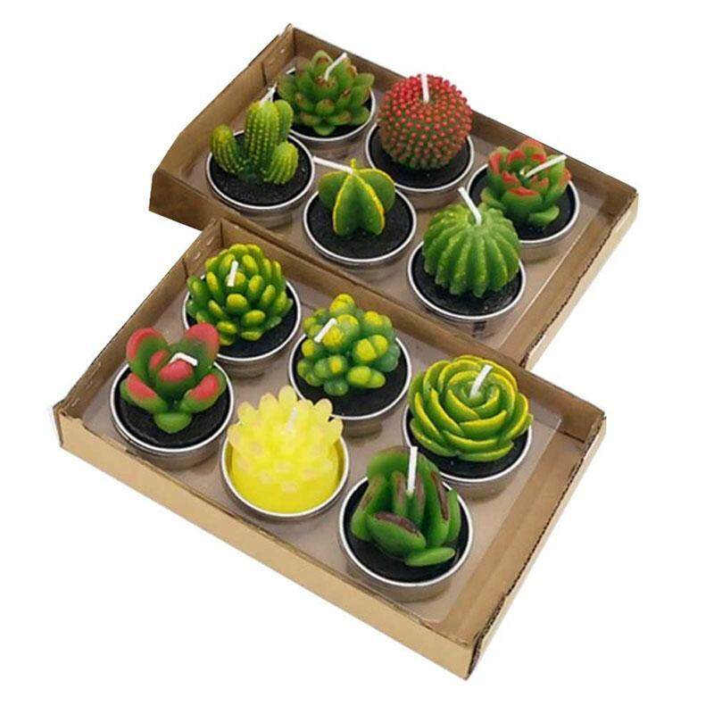 Goal-five 12pcs Cactus Prickly Pear Candle, Birthday Smokeless Aromatherapy Creative Whit Craft Candle Christmas Day White Scented Fleshy Candle