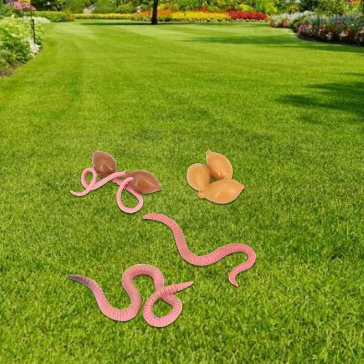 Details about  /Earthworm Grasshopper Duck Growth Cycle Animal Model Children/'s Educational Prop