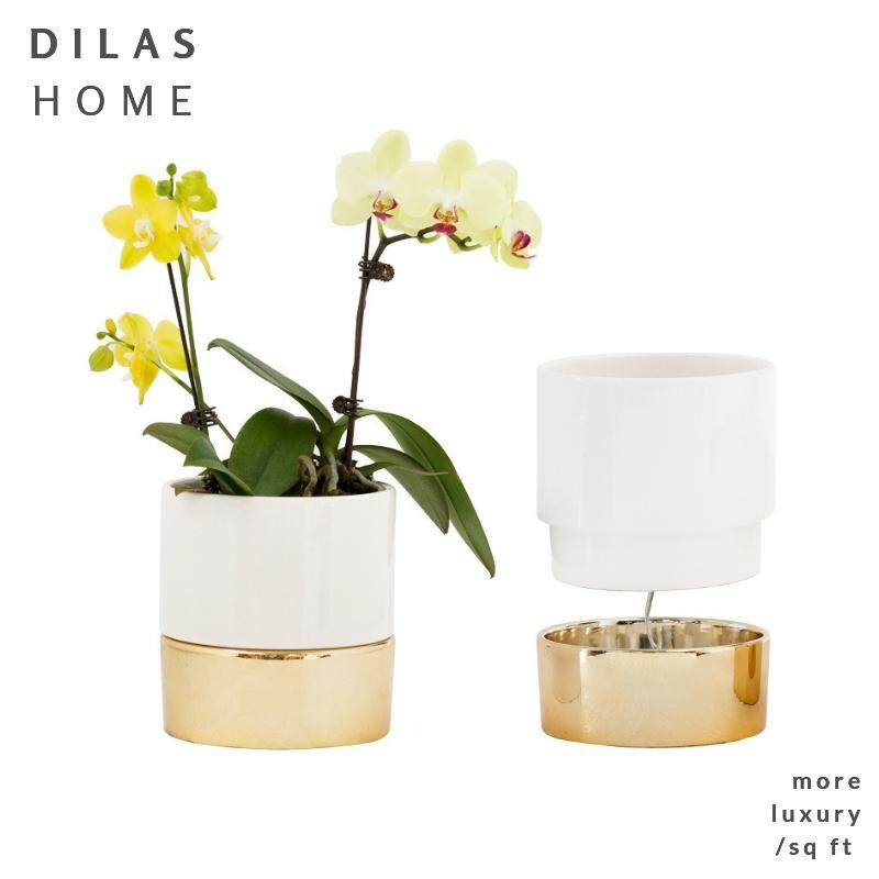 DILAS HOME Gold x White Self-Watering Porcelain Plant Pot Home Garden Planter