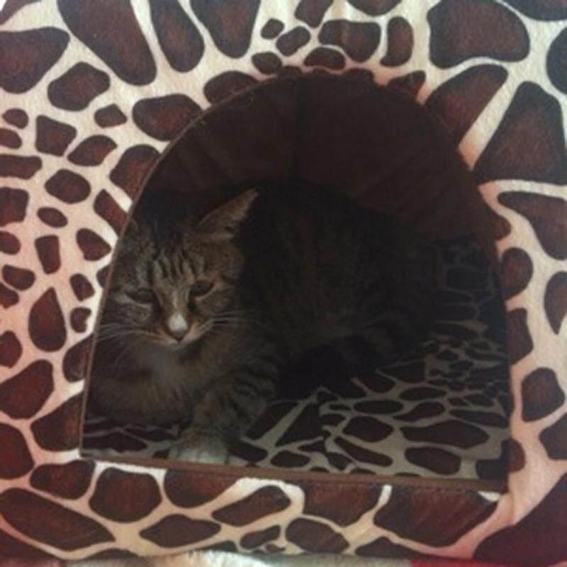 Dâu Mềm Pet Dog Cat House Cũi Chó Thời Trang Giỏ Đệm Có Thể Tháo Rời Đệm Ngủ