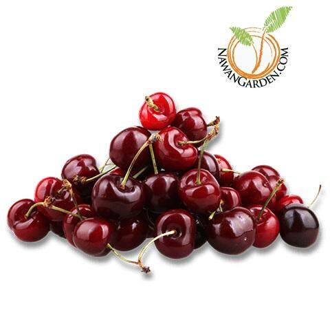 [LIMITED] Pokok Cherry Tropical Hybrid