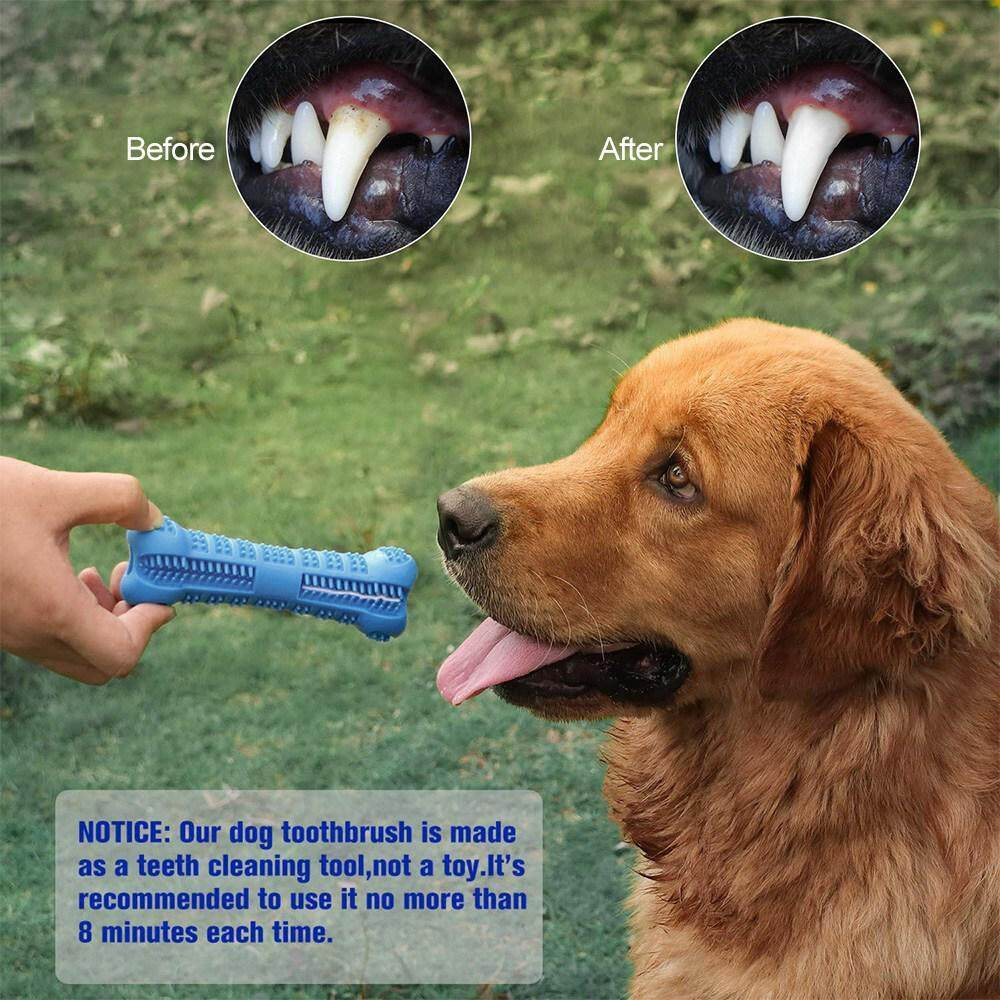 Pet Dog Bone-shape Toothbrush Brushing Chew Toy Stick Teeth Cleaning Oral Care S