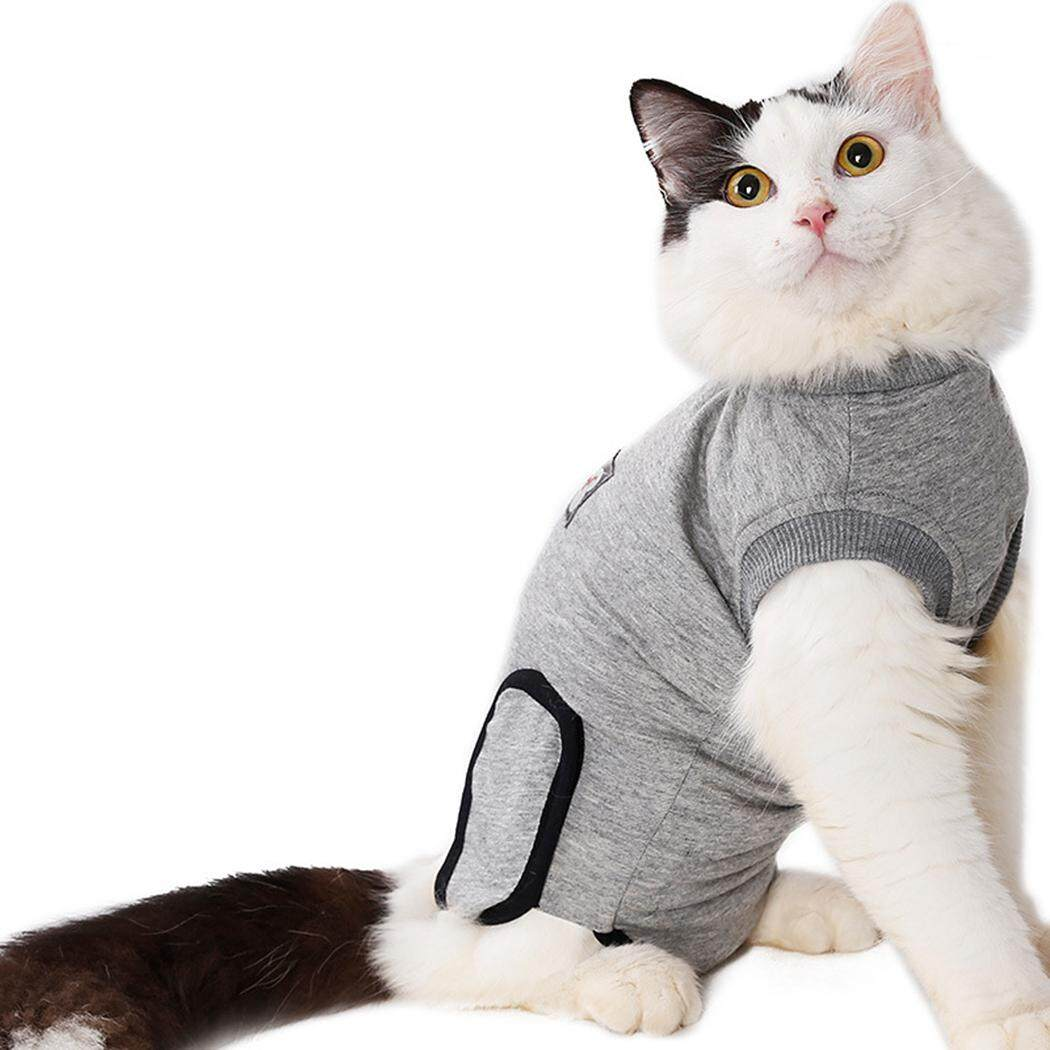 Phục hồi Bộ Đồ Thun Cotton Mềm Mại Bảo Vệ Thú Cưng Phù Hợp Với Quần Áo Thú Cưng cho Mèo, S - 6