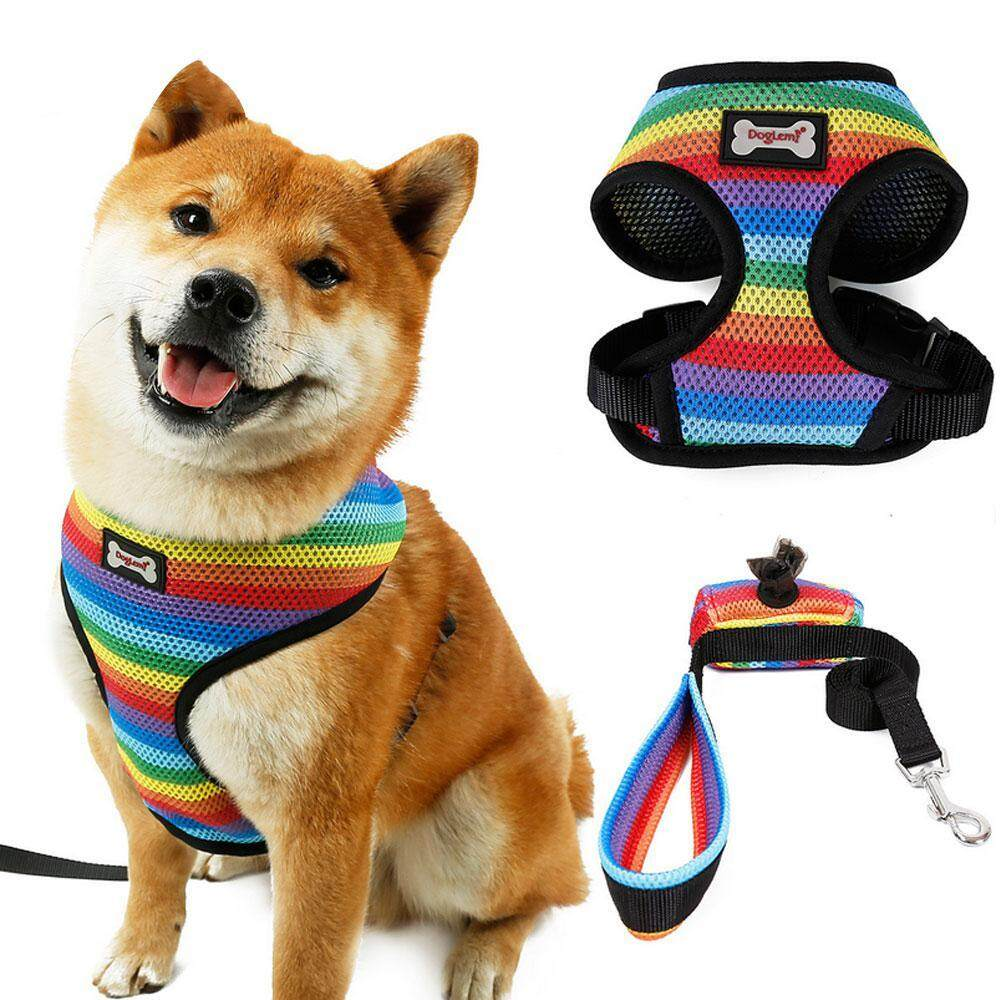 GoodGreat Dog Collar Dog Outing Breathable Rainbow Chest Strap Dog Leash Set Pet Supplies S/
