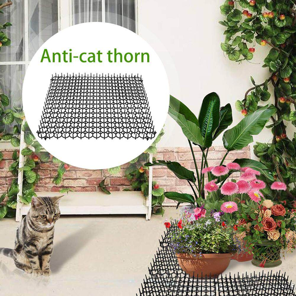 KR 5 pieces of environmentally friendly gardening plastic anti-cat thorns cat and dog repellent pad plastic nails