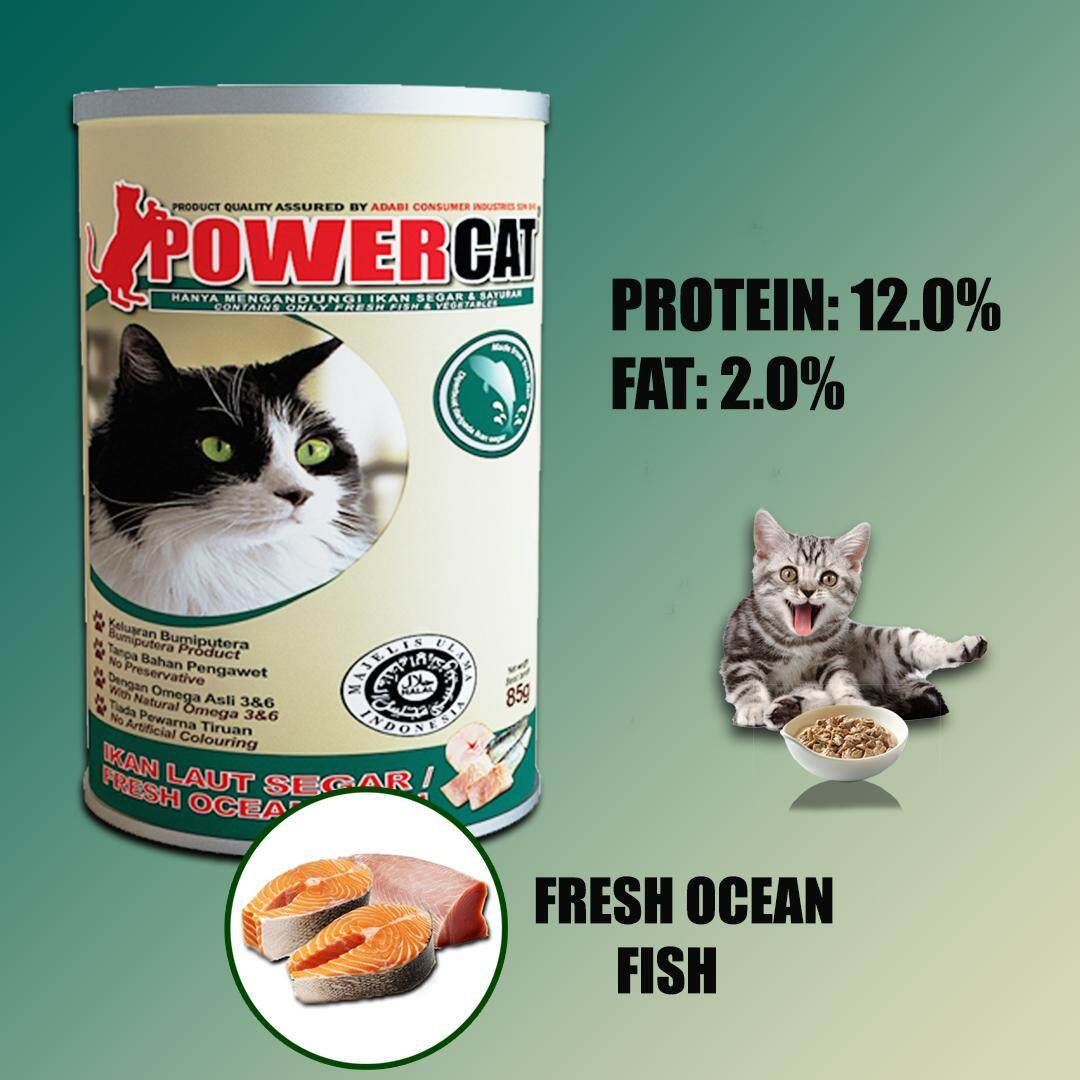 Power Cat Buy Power Cat At Best Price In Malaysia Www