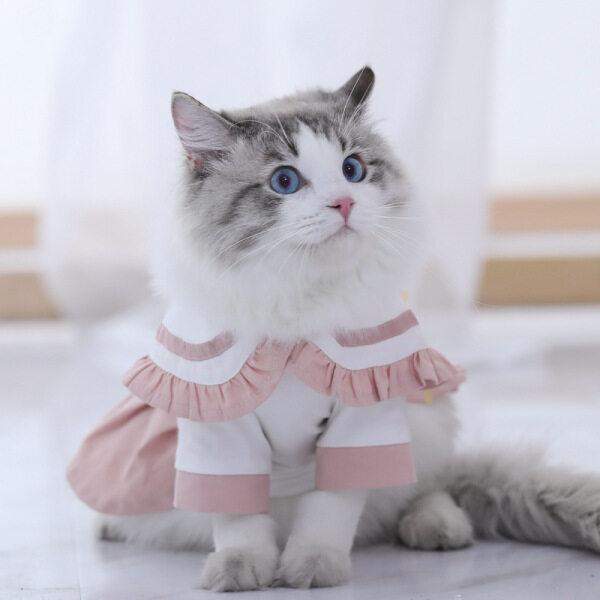 Váy Cho Mèo Cưng Meow Go, Đầm JK Phong Cách Nhật Bản Mỏng Mùa Hè Váy Dễ Thương Cho Mèo Rối Mèo Đầm Mèo Con Váy Xếp Li Cho Thú Cưng Quần Áo Cho Mèo