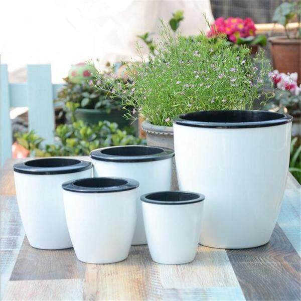 New Automatic water-absorbing Flower Pots Bonsai Creative Multi-meat Plant Hydroponic Potted Large Plastic Flower Pots
