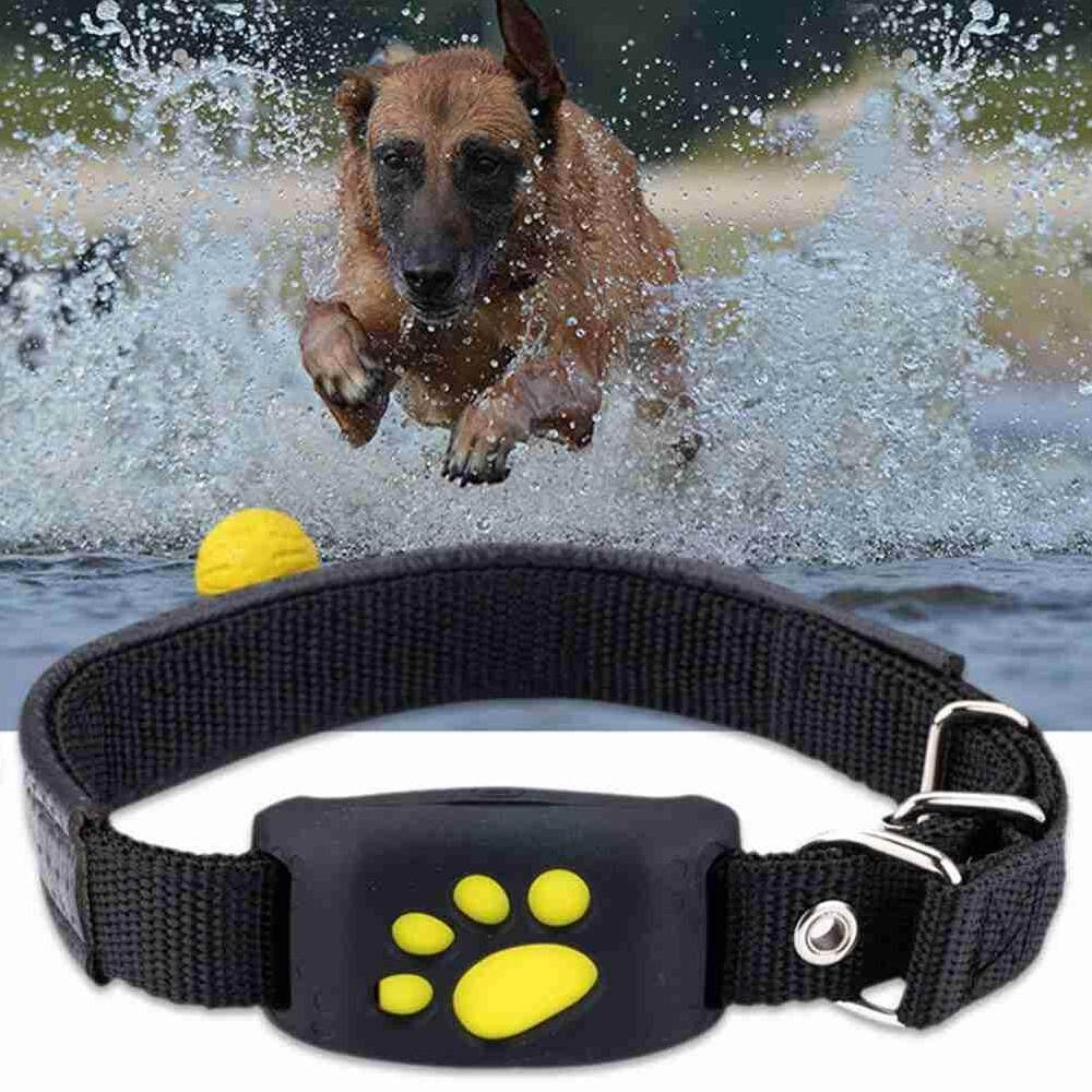 Bsex เครื่องติดตามสัตว์เลี้ยง Gps ปลอกคาสุนัขแมวกันน้ำ Gps Callback Function Usb ชาร์จ Gps สำหรับ Universal สุนัข By Bsex.