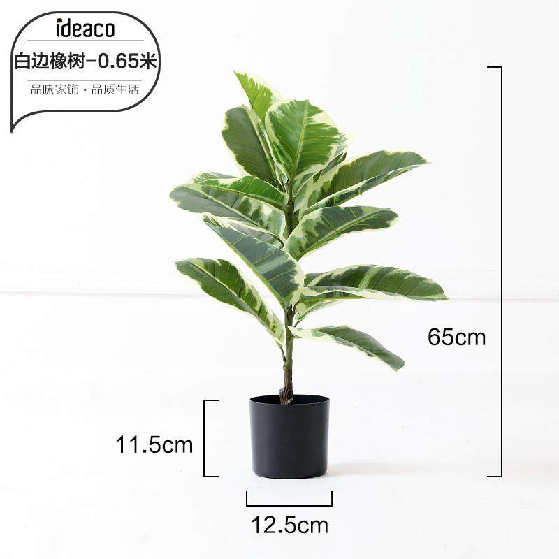 Nordic Large Model Green Plant Bonsaii Decoration Monstera Ravenala Potted Plant Snnei Floor Ornaments