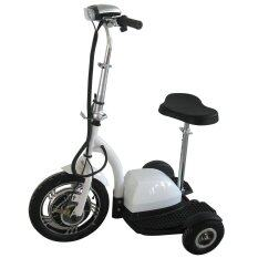 Fresco Three Wheel Electric Scooter 350w 36v By Fresco.