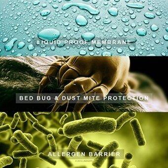 [International Shipping]LINENSPA Waterproof Bed Bug Proof Box Spring Encasement Protector - Queen()