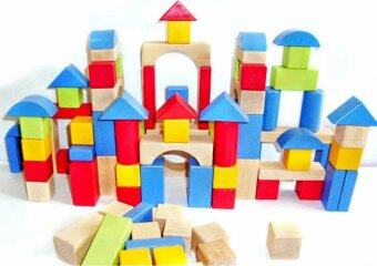 100-pcs Wooden Brick Set (Blue)