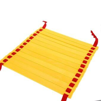 12 Rung 6 Meters Agility Ladder Speed Training Ladder for Soccer Football with Carry Bag