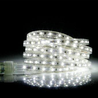 10ft / 3m 3528 SMD Waterproof Flexible LED Strip Lights, AC 110V 180 Leds or 60Led/m LED Rope Light, Pure White Light
