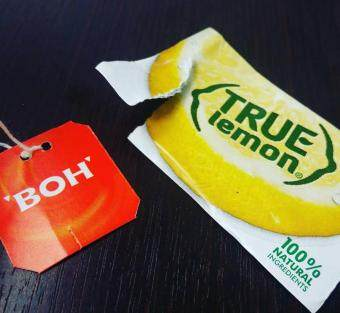 [Buy 1 FREE 1] [Hat Trick Deal] True Lemon + True Lime + True Grapefruit [Limited Time Offer](Free Lemon)