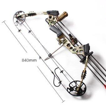 20-70 LBS Left Handed Adjustable Magnesium Alloy Compound Bow Archery Full Kit